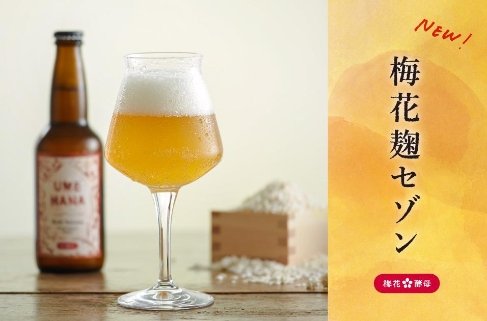 梅花麹セゾン(3本セット)